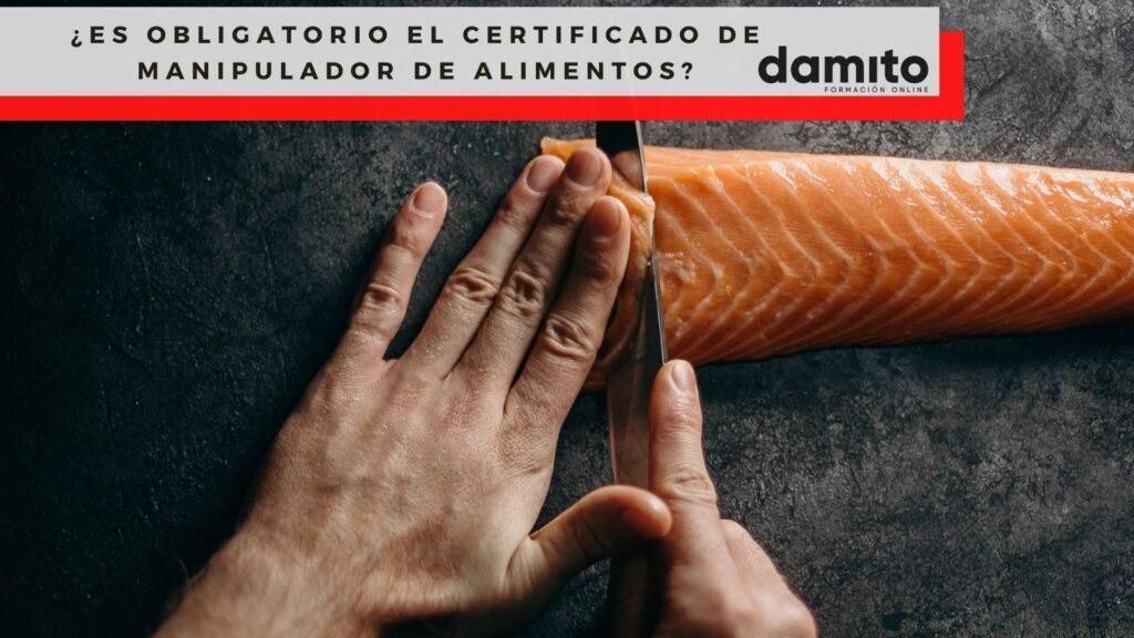¿Es obligatorio el Certificado de Manipulador de Alimentos?